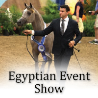 Egyptian Event Show