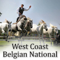 West Coast Belgian National