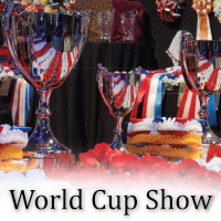 World Cup Show